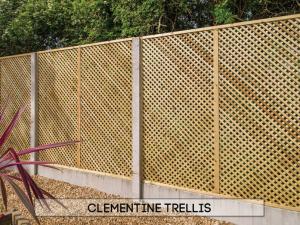 Garden fencing Dublin - Clementine Trellis