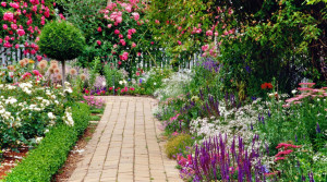 arreglar-jardin-2