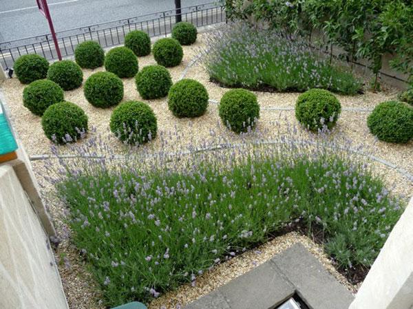 Garden design ideas apco garden design for Garden designs ie