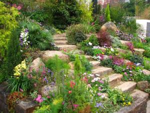 the-beauty-of-rock-garden-design-for-backyard-garden-ideas-home-1024x768